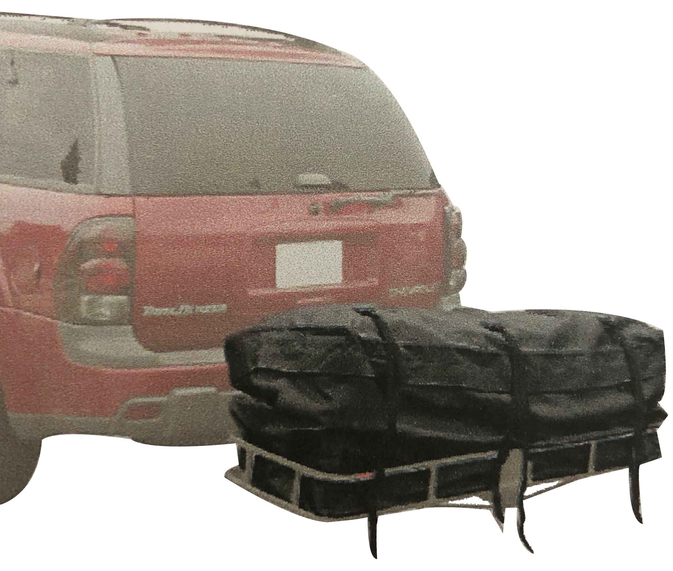Expandable Cargo Carrier Bag